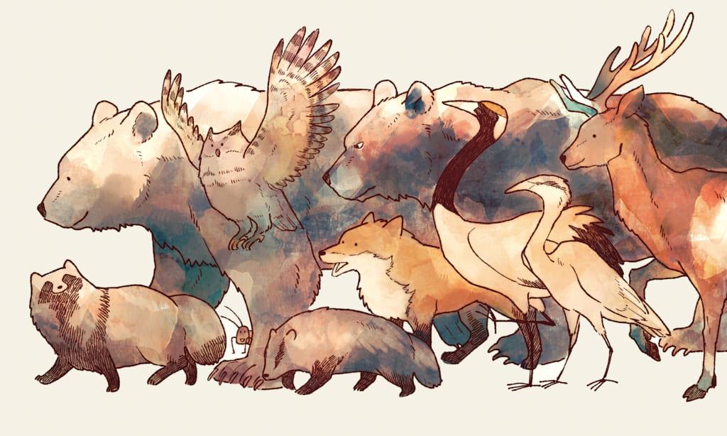 webで話題の動物マンガ『クマとたぬき』がついに書籍化!とらのあな限定版もあります♡
