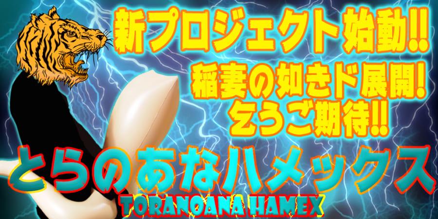 新展開まもなくスタート!!二次元コミュニケーションデバイス『とらのあなハメックス』大好評発売中!!
