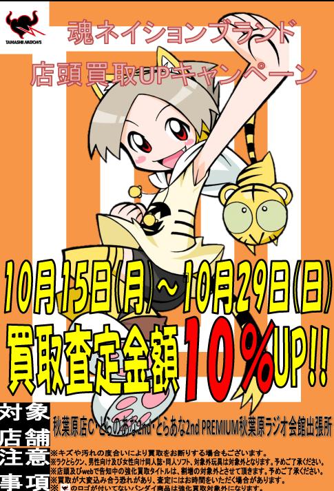 魂ネイション10%買取アップ