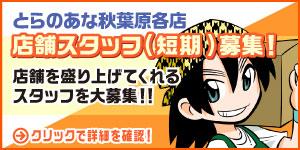 秋葉原店 冬の短期販売スタッフ緊急募集!!平成最後の冬はとらのあなで働こう!!