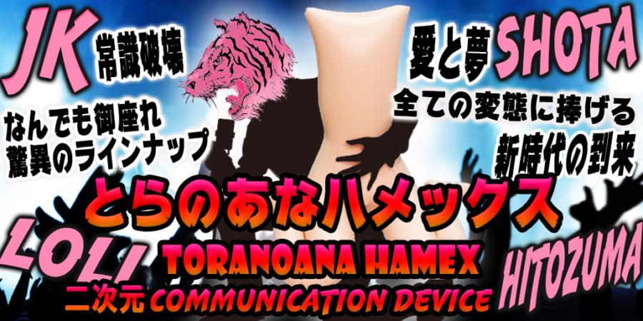 遂に新作登場!コラボ旋風巻き起こるハメックスシリーズ!!小路あゆむ、バクシーシAT、名飼証など参加!!