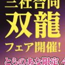 『三社合同双龍フェア』開催!
